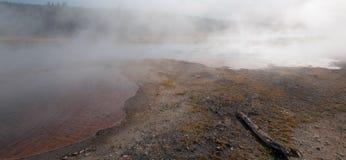 Nieboszczyk logował się brzeg Gorących kaskad gorąca wiosna w Niskim gejzeru basenie w Yellowstone parku narodowym w Wyoming usa Obrazy Royalty Free