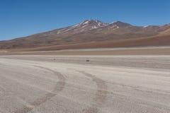 Niebrukowana droga w Altiplano Siloli pustynia, część Reserva Eduardo Avaroa, Boliwia - przy wysokością 4600m Obraz Stock