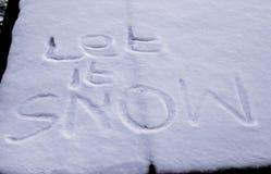 niech śnieg Zdjęcia Royalty Free