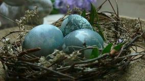 Niecki kamery ruch na wielkanocy gniazdeczku z farbującymi błękitnymi jajkami zbiory