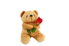 Niedźwiadkowa lala trzyma róży fotografia royalty free