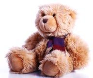 niedźwiadkowy śliczny miś pluszowy Obraz Royalty Free