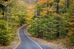 niedźwiadkowy diun pętli drogi sceniczny dosypianie Obrazy Royalty Free