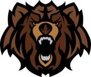 niedźwiadkowy graficzny grizzly głowy maskotki wektor Fotografia Royalty Free