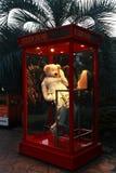niedźwiadkowy Jeju muzeum miś pluszowy Zdjęcia Royalty Free