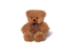 niedźwiadkowy miękki miś pluszowy Fotografia Royalty Free