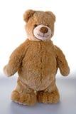 niedźwiadkowy miękki miś pluszowy Fotografia Stock