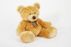 niedźwiadkowy miś pluszowy Obraz Royalty Free