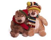 niedźwiadkowy pary miękkiej części miś pluszowy Zdjęcia Royalty Free