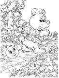 niedźwiadkowy poli- roly Obrazy Royalty Free