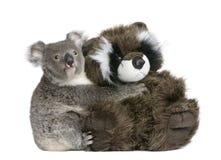 niedźwiadkowy przytulenia koali miś pluszowy obraz stock