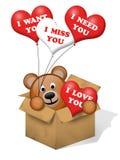 niedźwiadkowy pudełkowaty brąz Fotografia Royalty Free