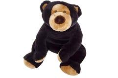 niedźwiadkowy siedzący miś pluszowy Fotografia Royalty Free