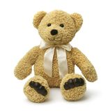 niedźwiadkowy szczęśliwy siedzący miś pluszowy Zdjęcia Royalty Free