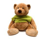 niedźwiedź Obrazy Royalty Free