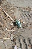 niedźwiedź 2 zagubiony zdjęcie stock