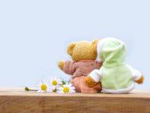 Niedźwiedź Fotografia Royalty Free