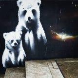 Niedźwiedź Zdjęcie Royalty Free