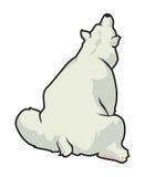 niedźwiedź biegunowy Zdjęcia Stock