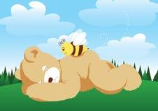 Niedźwiedź i pszczoła. Obraz Stock