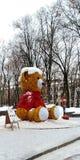 Niedźwiedź na ulicie w Kharkov obraz royalty free