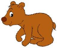 niedźwiedź niemowlę Obraz Stock