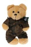niedźwiedź odizolowywający militarny miś pluszowy mundur Obraz Stock
