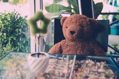 niedźwiedź odizolowywający nad siedzącym miś pluszowy biel Zdjęcia Royalty Free