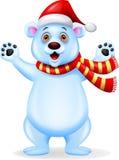 Niedźwiedź polarny kreskówka Fotografia Stock