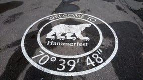 Niedźwiedź Polarny - powitanie Hammerfest obraz royalty free