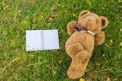 niedźwiedź tworzył twój projekta ślicznego miś pluszowy Obrazy Royalty Free