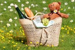 niedźwiedzie picnic miś pluszowy Obrazy Royalty Free