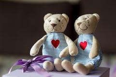 Niedźwiedzie w miłości zdjęcia royalty free