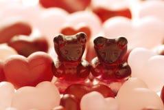 niedźwiadkowa para Zdjęcia Royalty Free