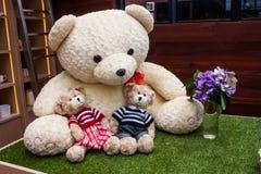 Niedźwiadkowa Rodzina Fotografia Stock