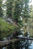 Niedźwiadkowy jezioro Zdjęcia Royalty Free