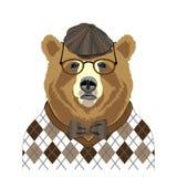 Niedźwiadkowy portret royalty ilustracja