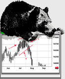 niedźwiadkowy rynek Zdjęcie Stock