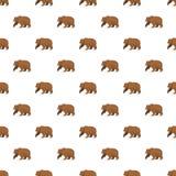Niedźwiedzia brunatnego deseniowy bezszwowy royalty ilustracja