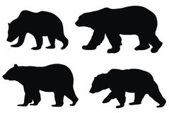 niedźwiedzie Zdjęcia Stock