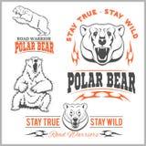 Niedźwiedzie polarni - wektoru set royalty ilustracja