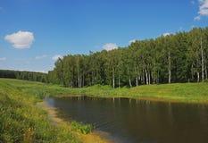 niedaleko jeziora Zdjęcie Stock