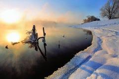 niedaleko rzeki Fotografia Royalty Free