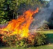Niedergeworfene Bäume auf Feuer Lizenzfreies Stockfoto