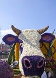 Niederländische Kuh mit Blumen Stockfotos