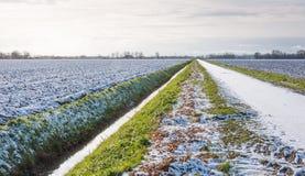 Niederländische Landschaft im Winter Lizenzfreie Stockfotos