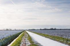 Niederländische Landschaft im Winter Lizenzfreies Stockfoto
