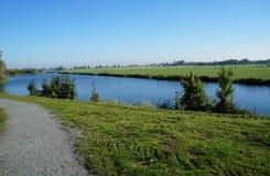 Niederländische Landschaft mit, die den Kühen weiden lassen auf den Gebieten nahe dem Fluss ist lizenzfreie stockbilder