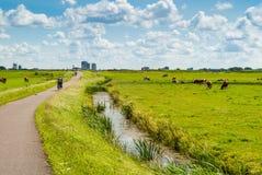 Niederländische Landschaft mit Radfahrern lizenzfreies stockbild