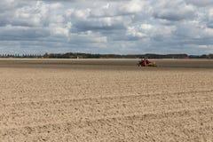Niederländische Landschaft mit Traktor auf dem gepflogenen Gebiet im Vorfrühling Stockfotografie